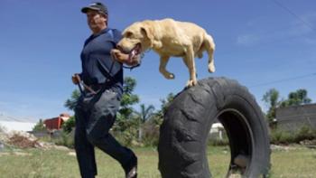 Escuela 'gradúa' canes de exportación