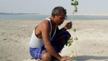 Hombre en India planta un árbol al día por 39 años