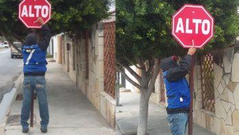 Sustituye Servicios Primarios señalamiento de ALTO