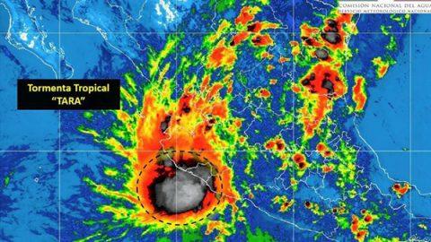 Activan Plan Marina en Colima, Jalisco y Michoacán por tormenta 'Tara'