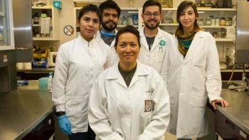 IPN logra eliminar VPH a 29 pacientes con fototerapia dinámica