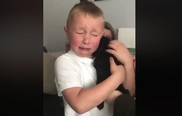 Pequeño llora de emoción al recibir de regalo a su primer perrito (VIDEO)