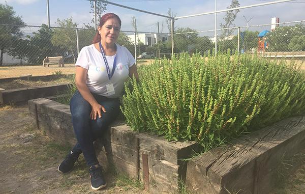 Crear un huerto ayudará a reducir el estrés urbano